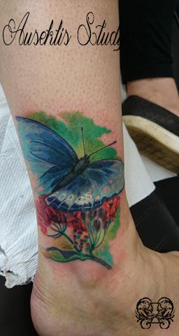 Evo realistic blue butterfly.jpg
