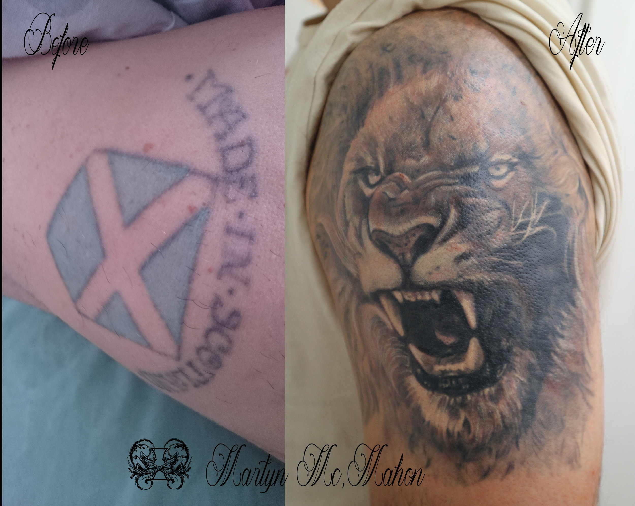 Martyn - Saltire Lion cover up.jpg