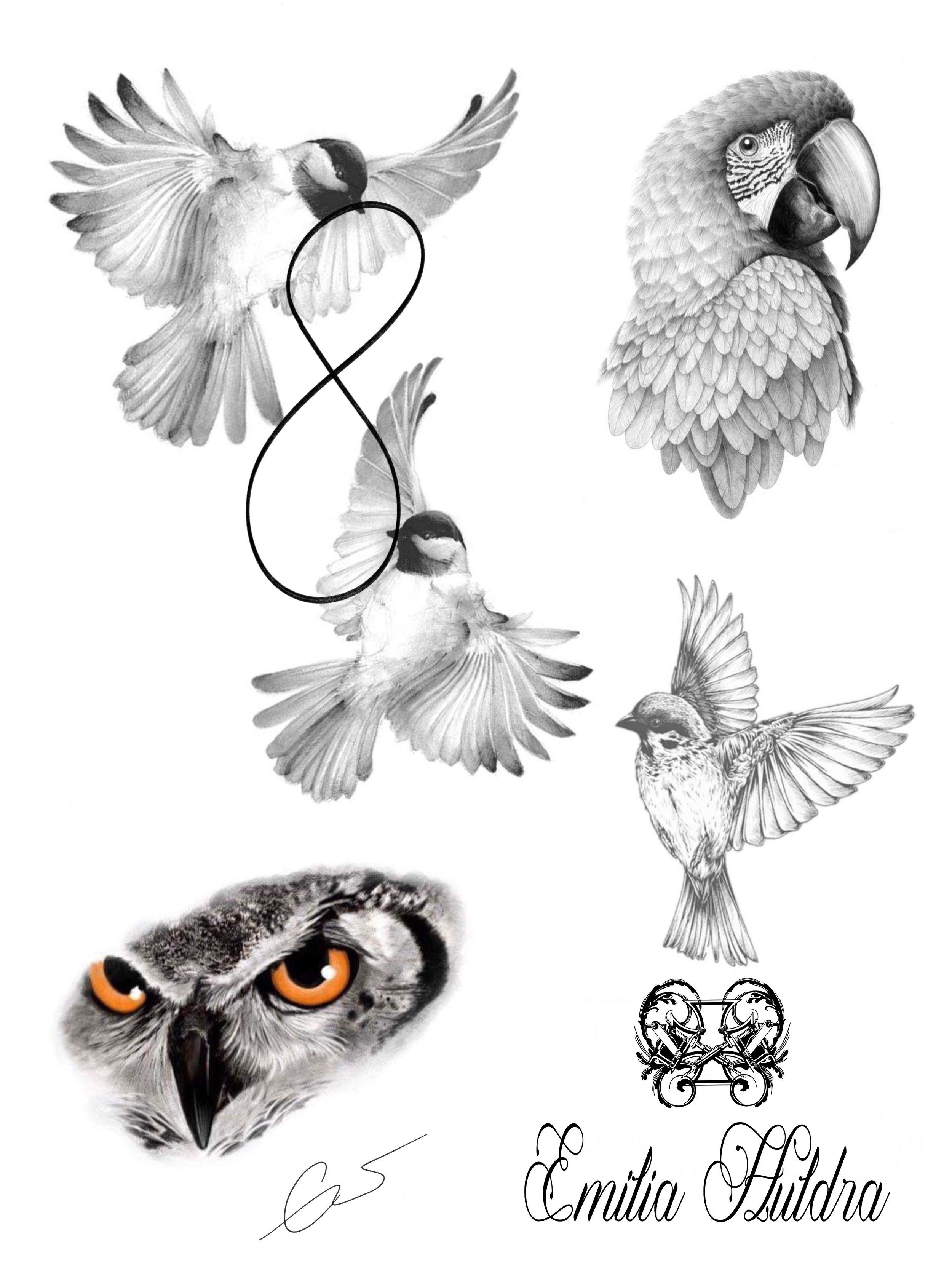 Emilia - b&g bird flash.jpg
