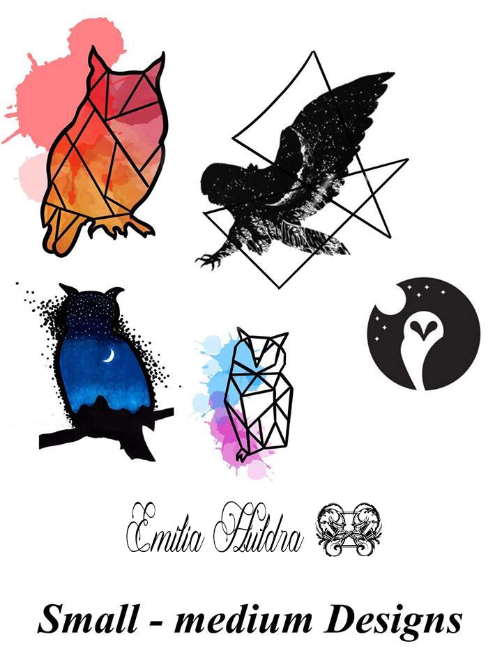 Emilia - colour owls.jpg