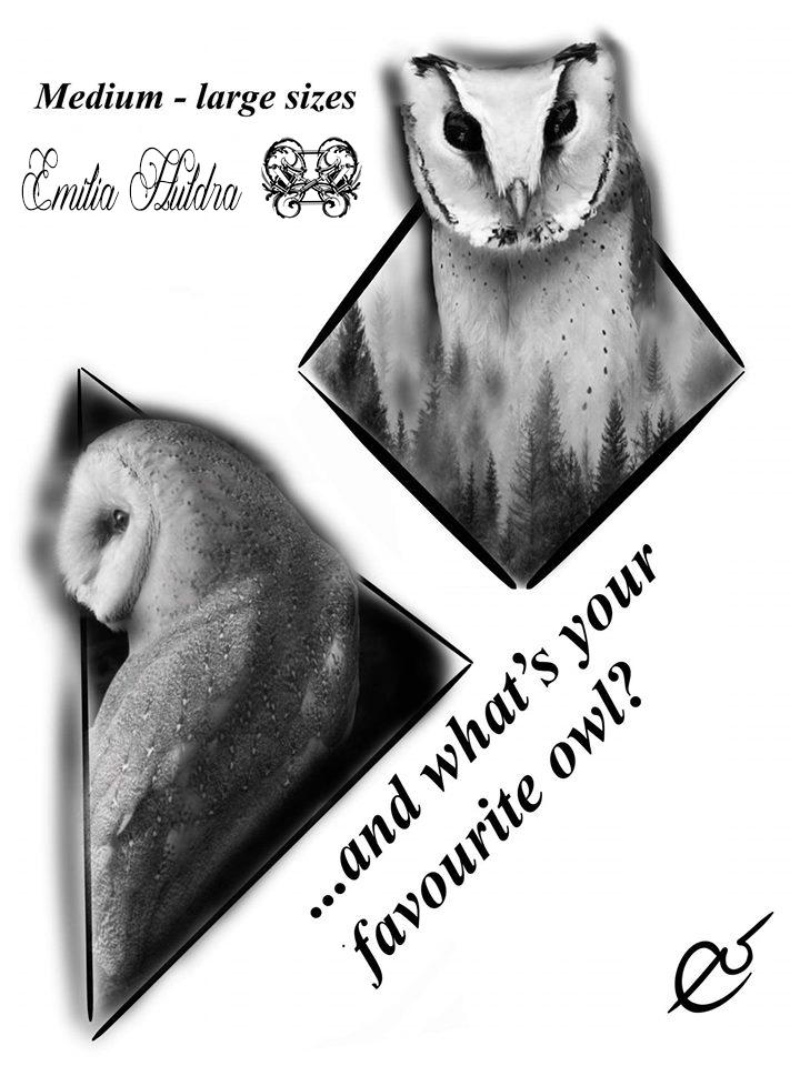 Emilia - medium barn owl.jpg