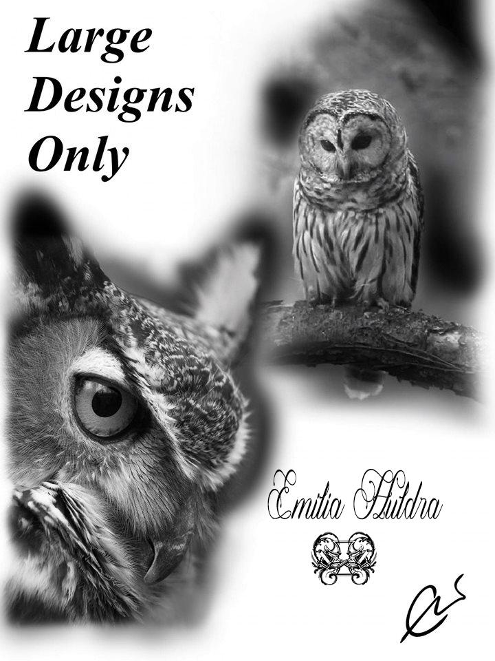 Emilia - owls large only.jpg