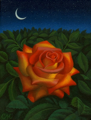Midnight Rose, Acrylic on Panel, 8 x 10 inches