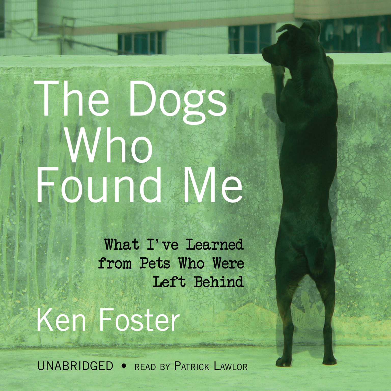 The Dogs Who Found Me cover unabridges
