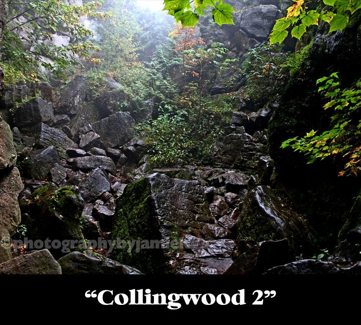 Collingwood 2 copy.jpg