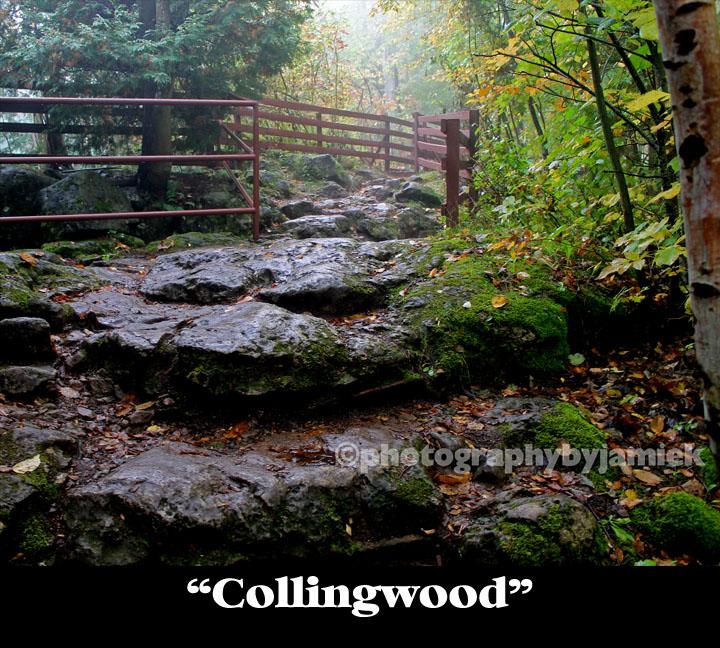 Collingwood copy.jpg