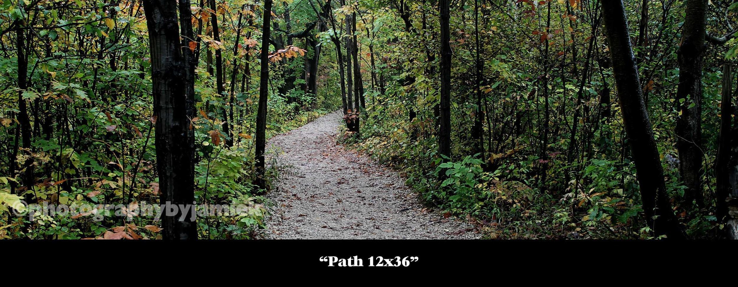 Path 12x36.jpg