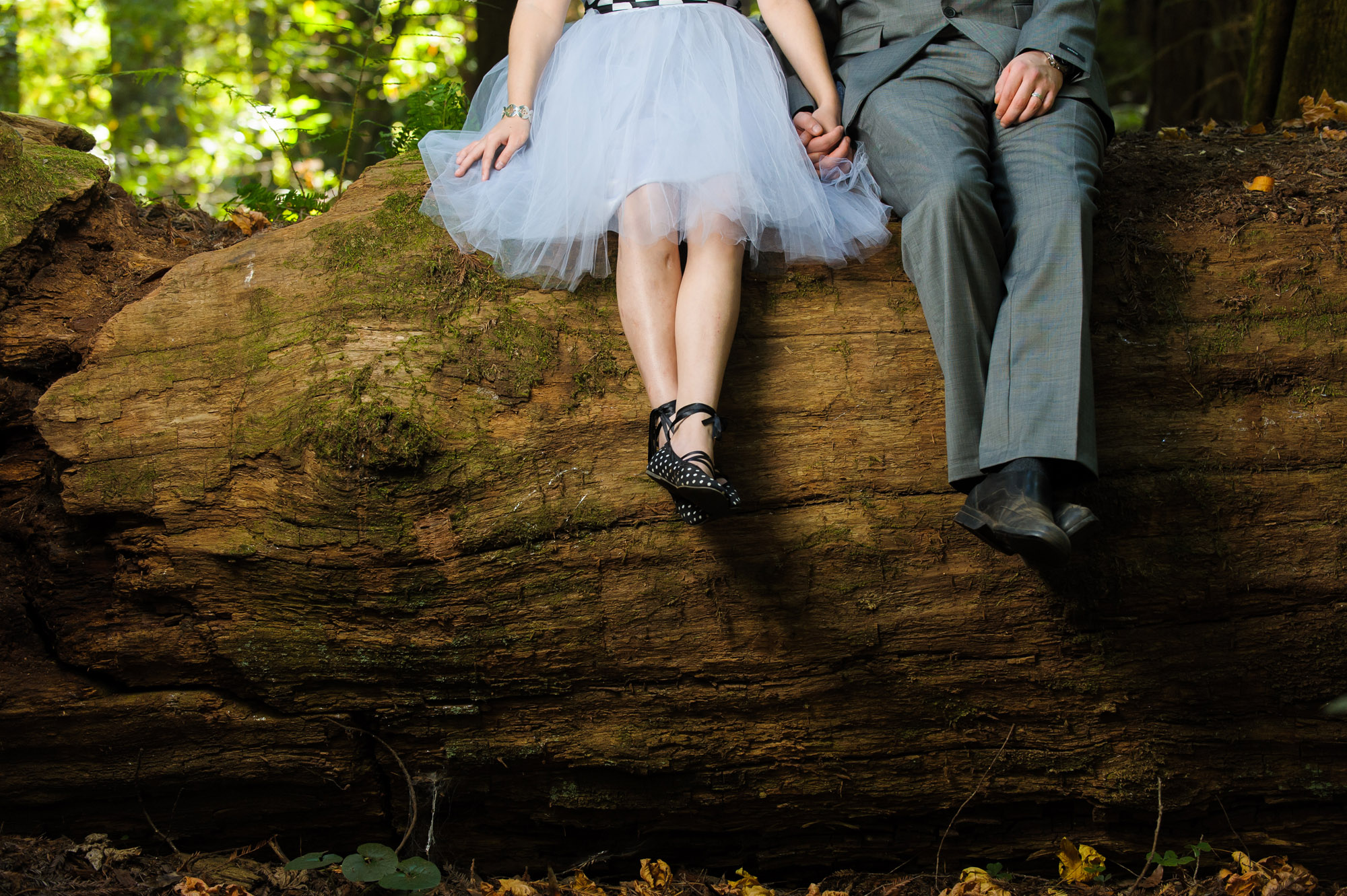 0207-d3_Katrina_and_Barry_Henry_Cowell_Redwoods_Felton_Wedding_Photography.jpg