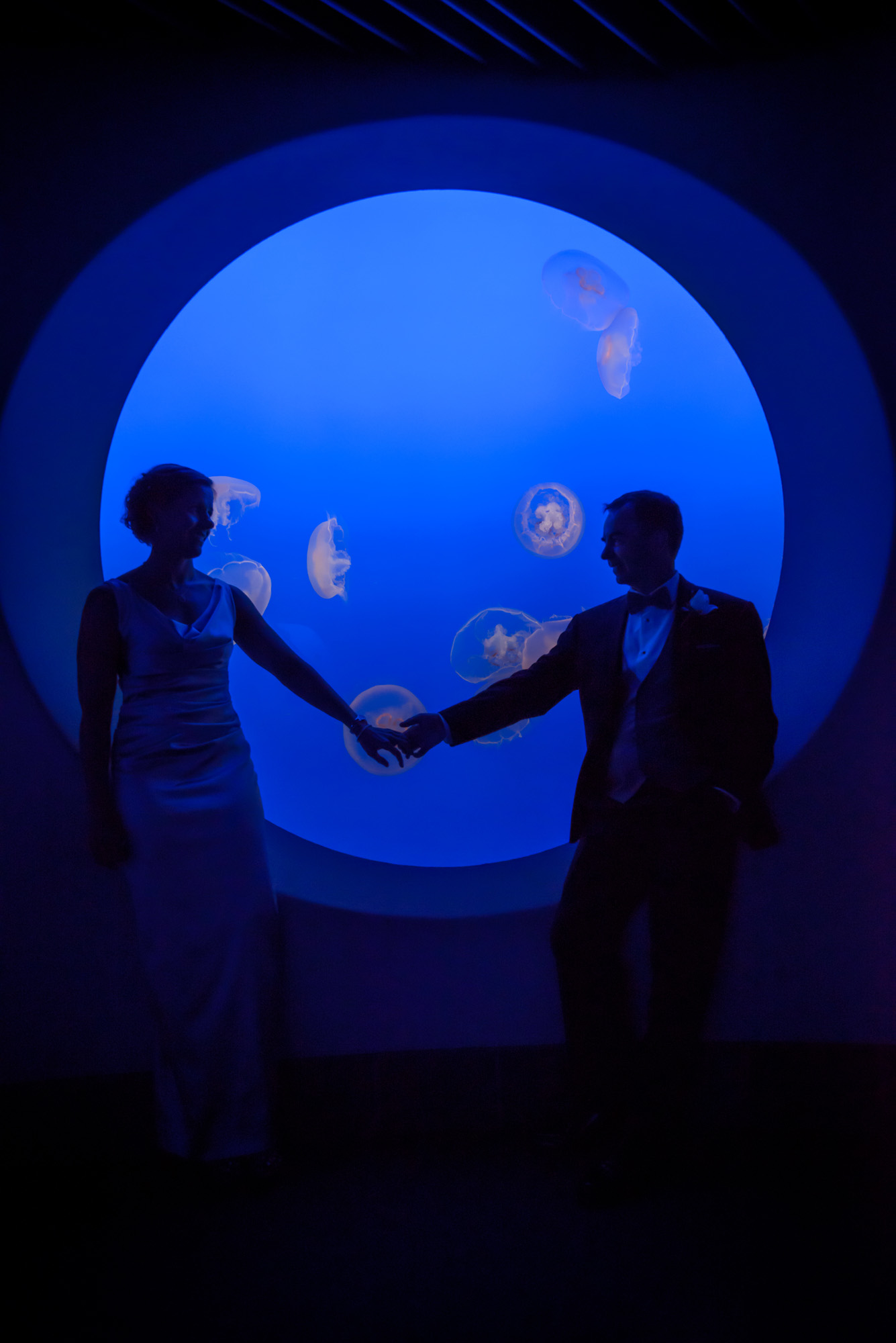 2124_d800_Kirsten_and_Bob_Monterey_Bay_Aquarium_Wedding_Photography.jpg