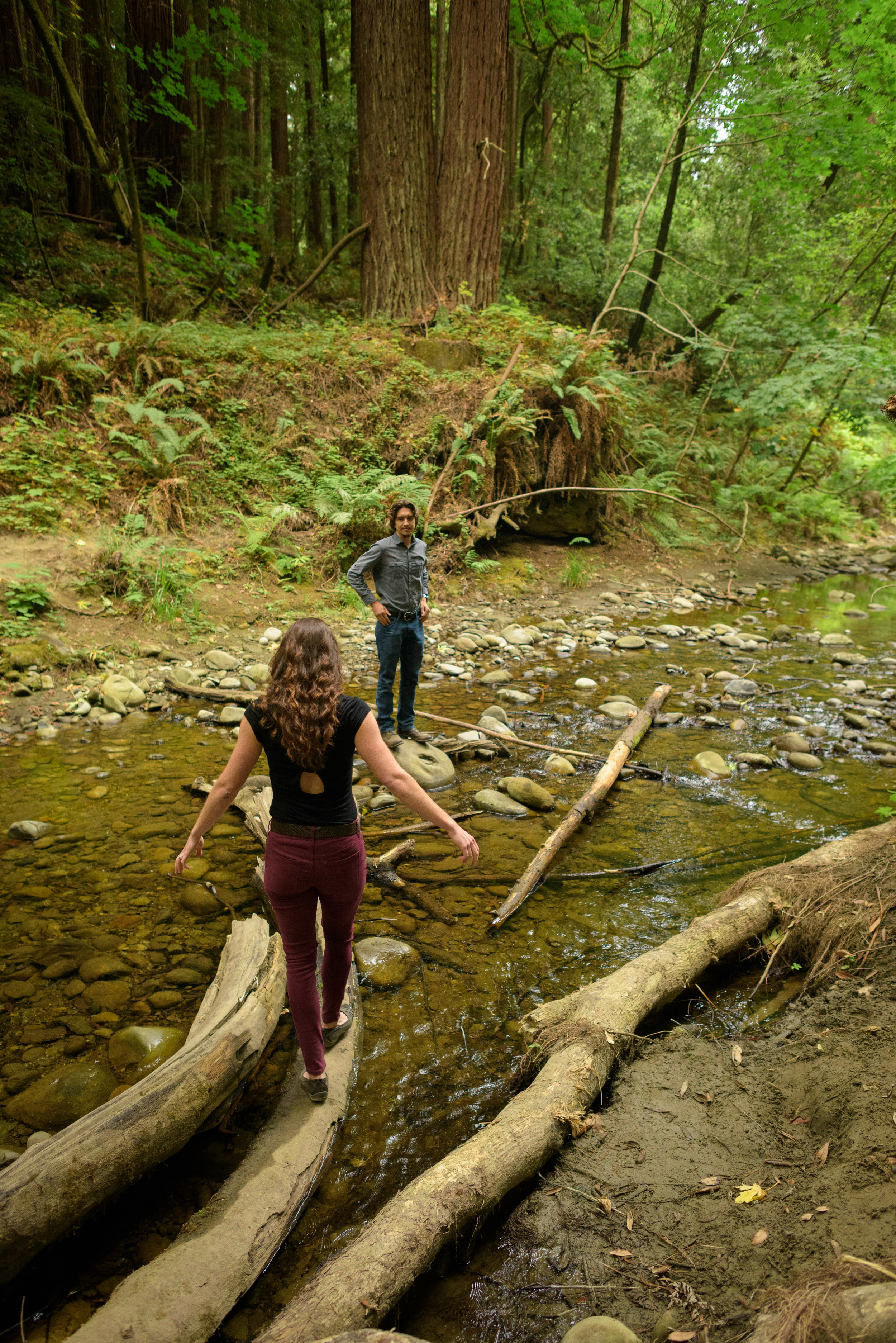 Couple walking away from camera on fallen trees across the creek - Engagement Photos in Nisene Marks Forest in Aptos, CA - by Bay Area wedding photographer Chris Schmauch
