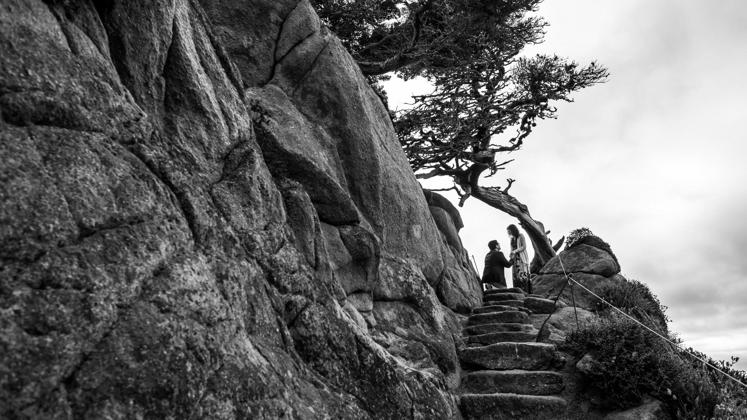 Wedding proposal at Point Lobos in Carmel, California