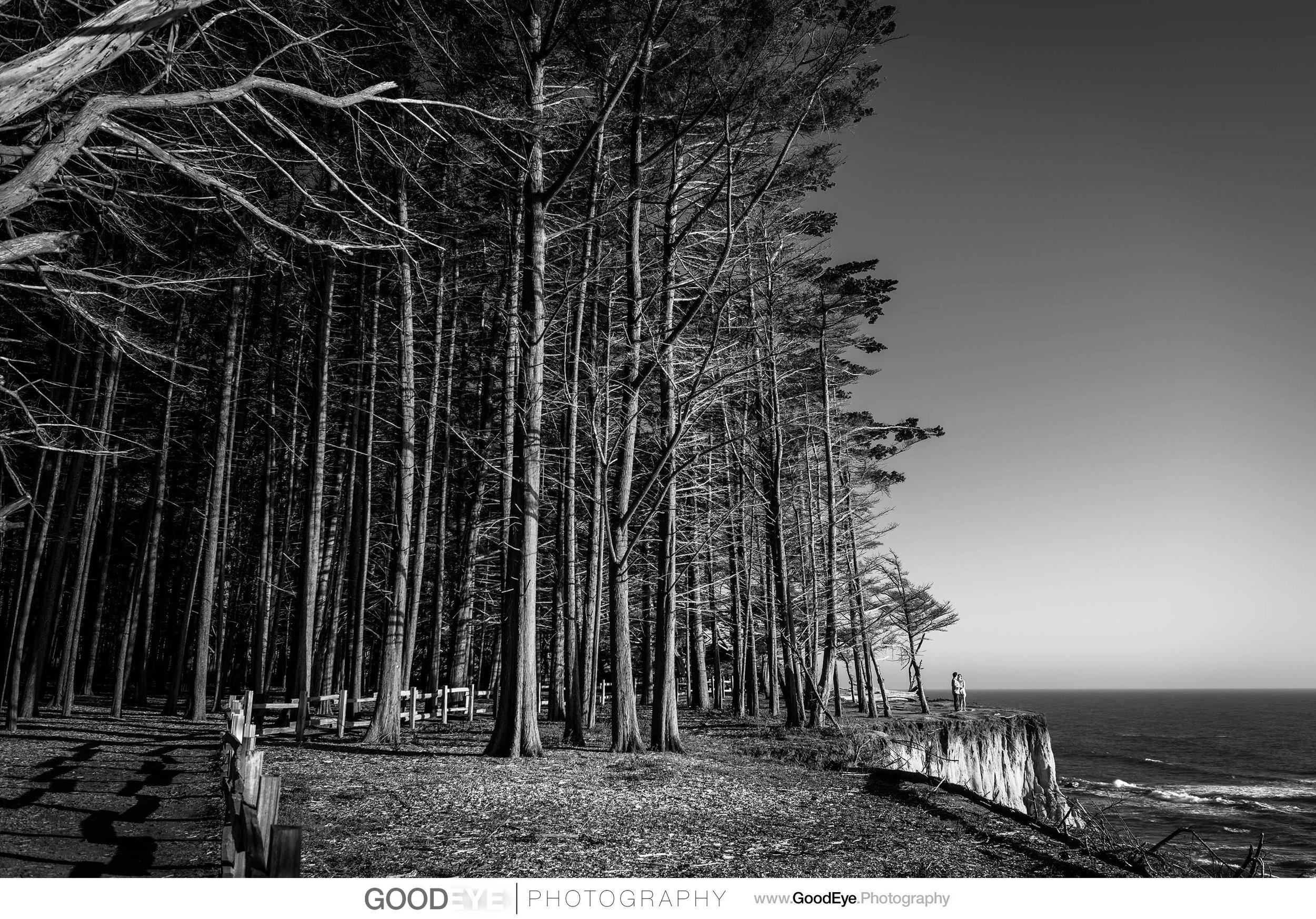 0233_Elena_and_Kirk_Fitzgerald_Marine_Reserve_Moss_Beach_Engagement_Photography_web.jpg