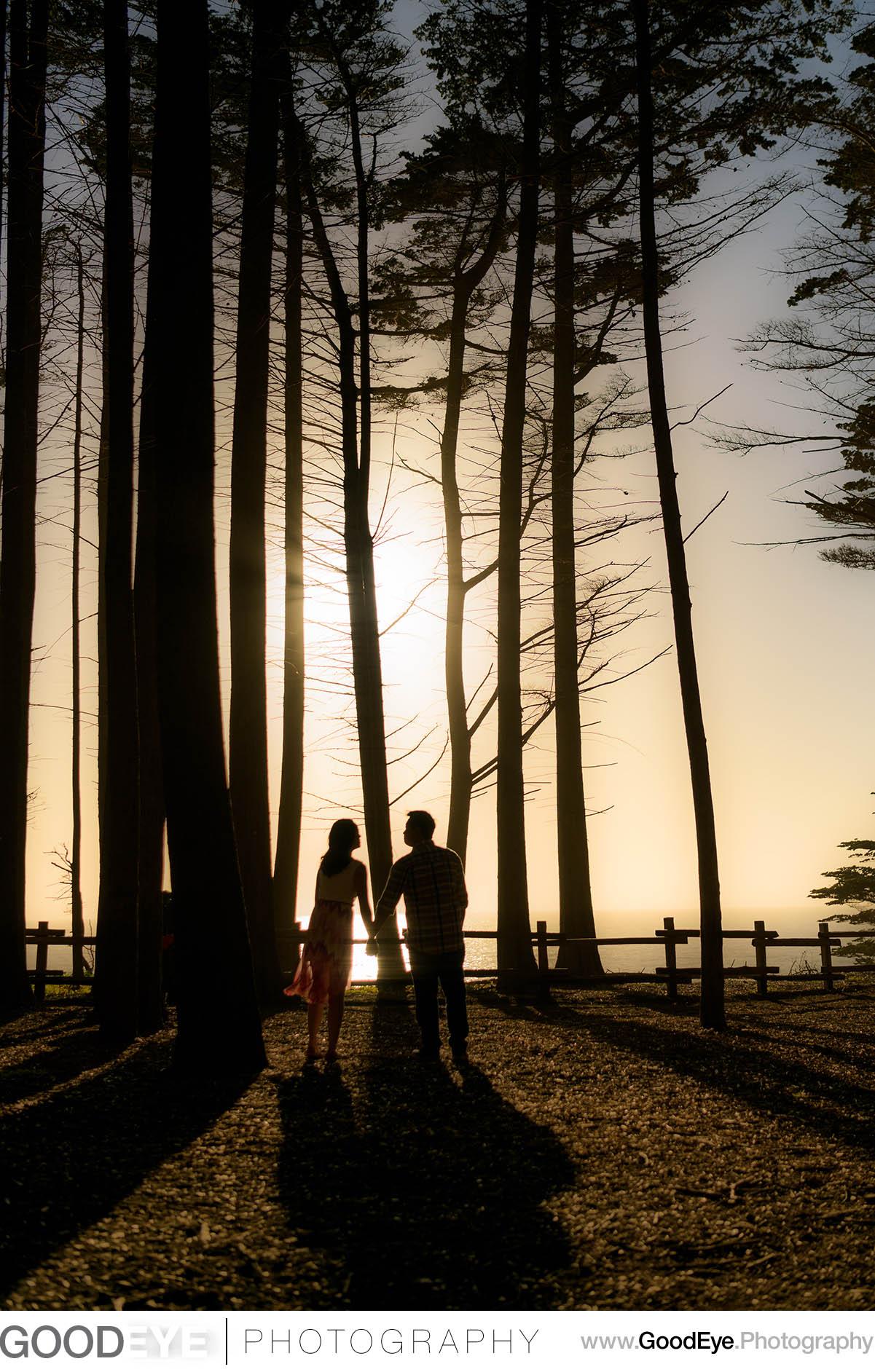 0244_Elena_and_Kirk_Fitzgerald_Marine_Reserve_Moss_Beach_Engagement_Photography_web.jpg
