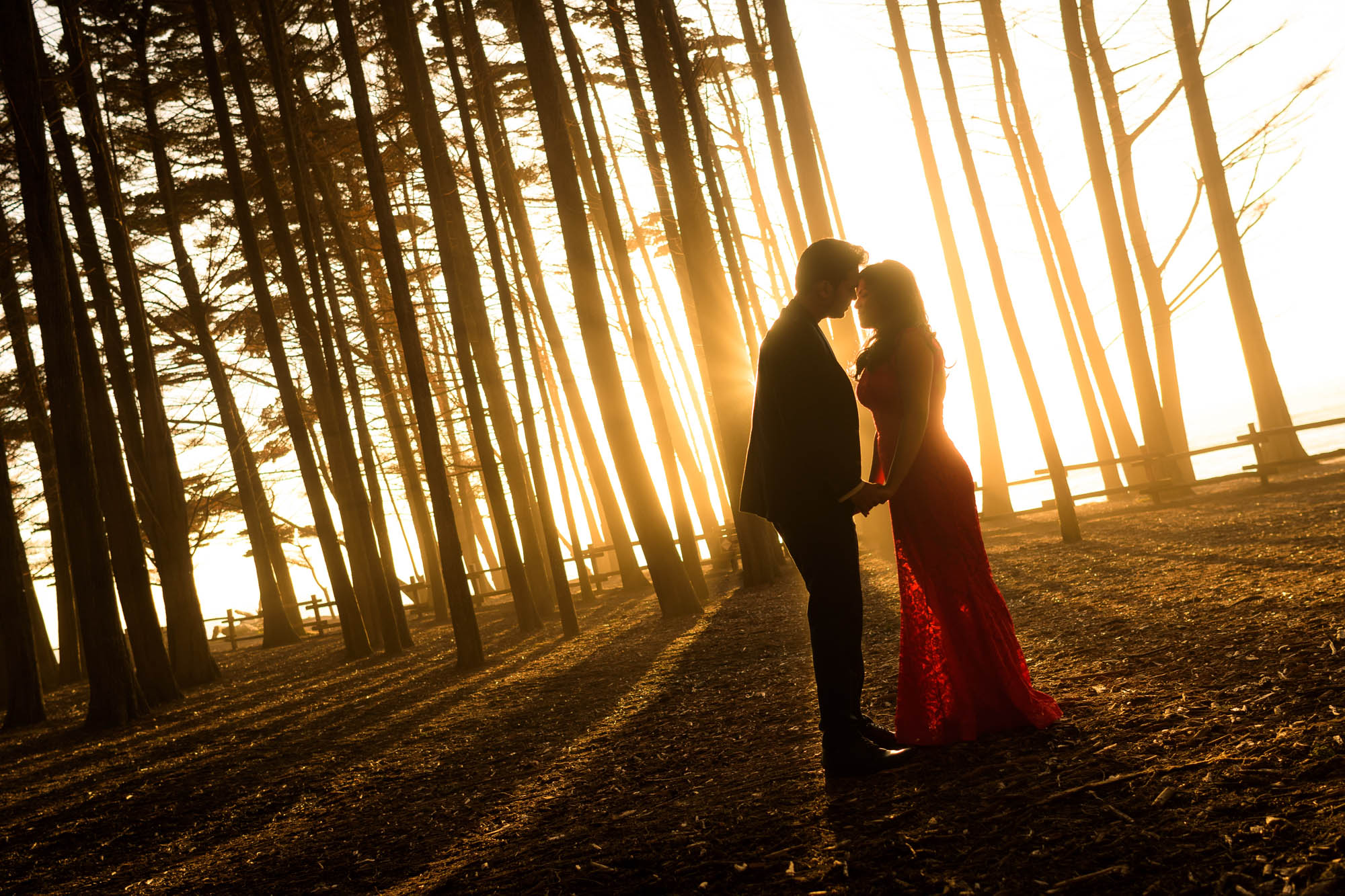 5997_Garima_and_Sushant_Fitzgerald_Marine_Reserve_Moss_Beach_Engagement_Photography.jpg
