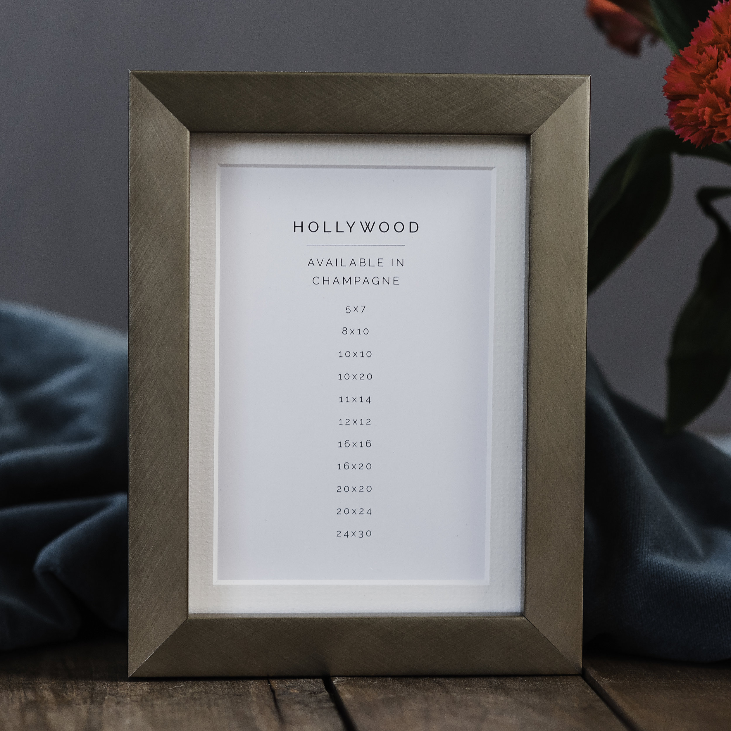 Hollywood Champagne Finish Frame