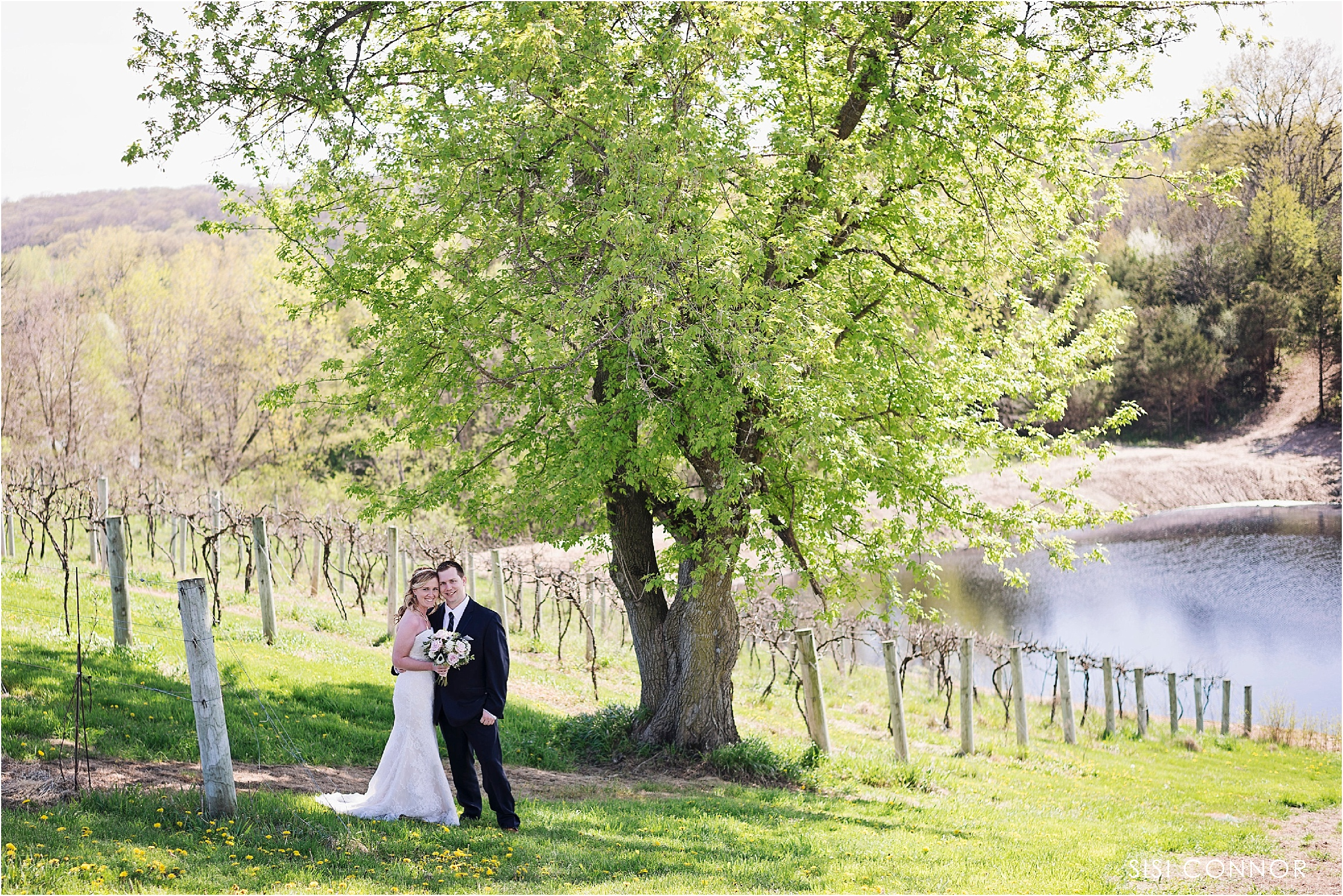 Wedding at Cedar Ridge Winery and Distillery