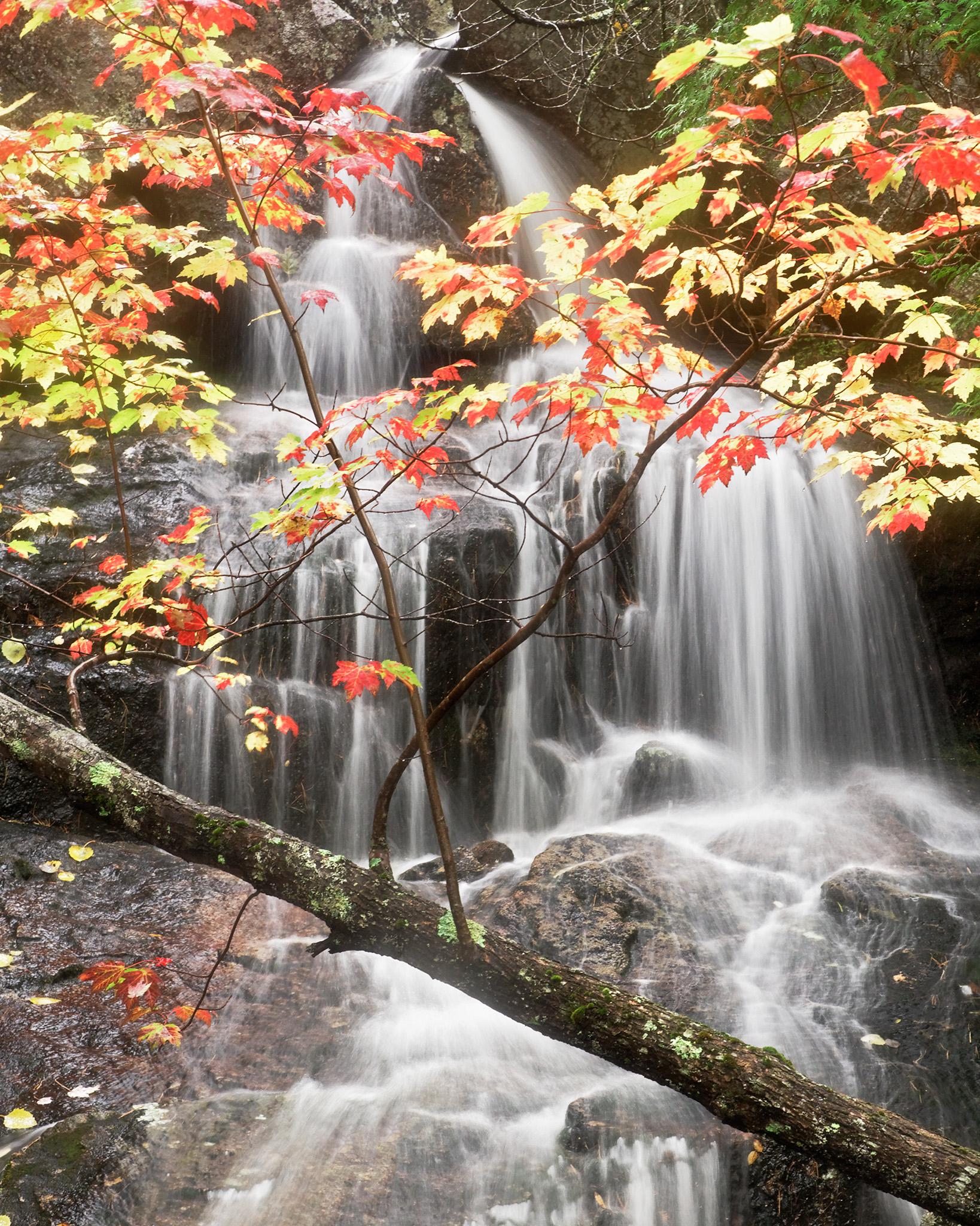 Cadillac Mountain Waterfall