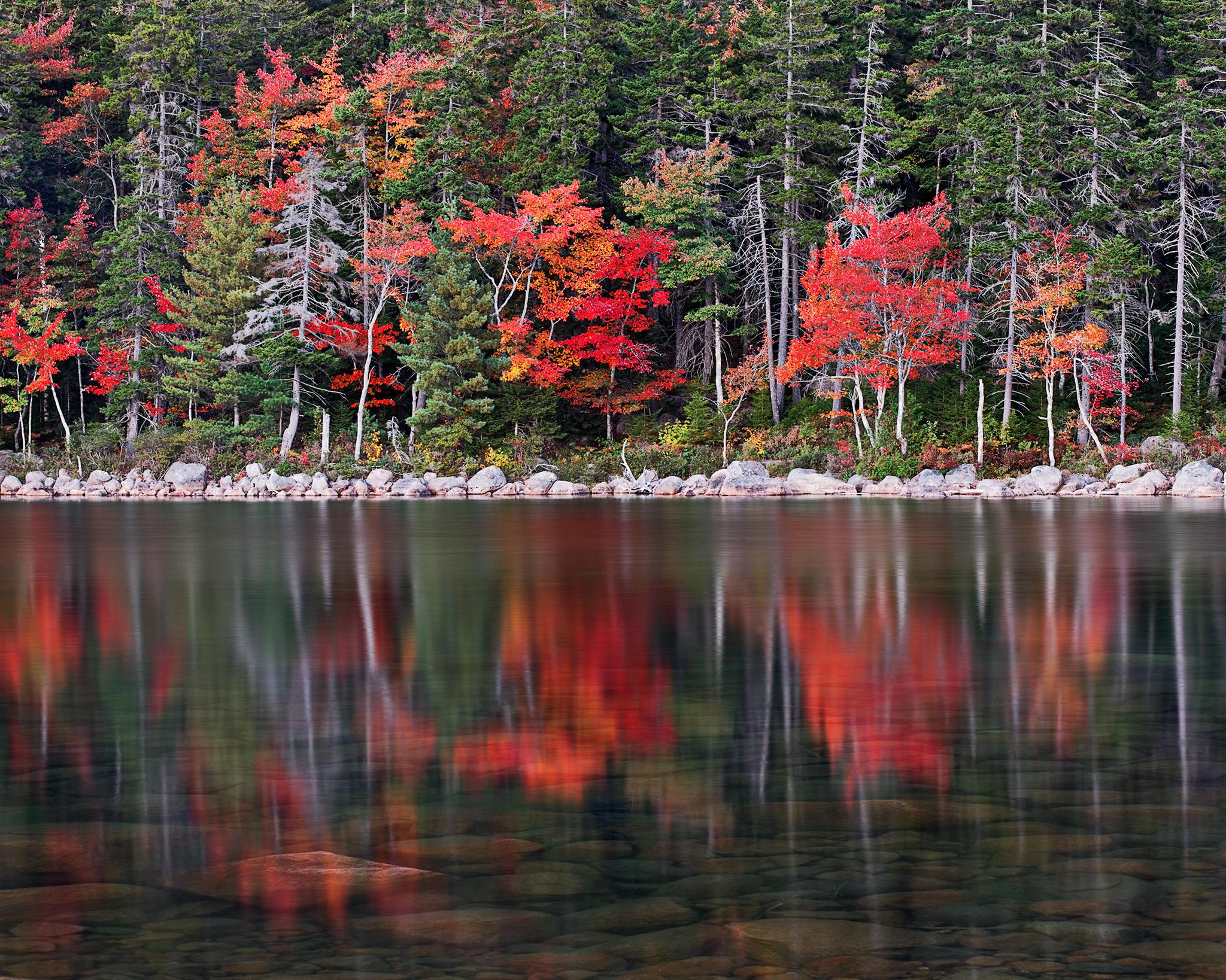 Jordan Pond Tree Line