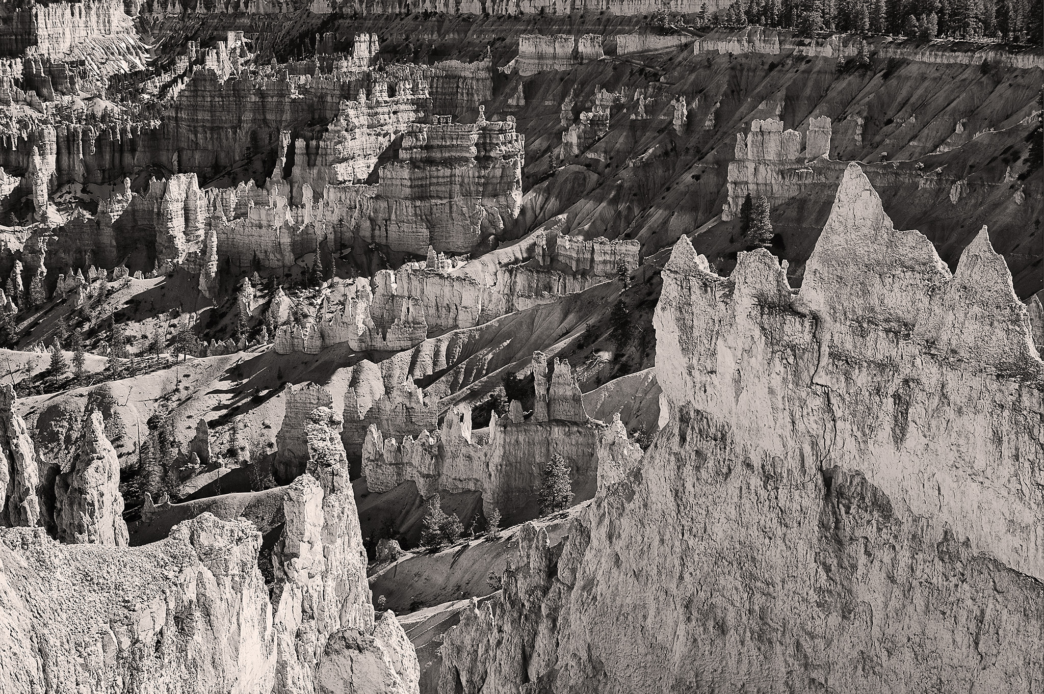 Below Sunrise Point - Bryce Canyon National Park