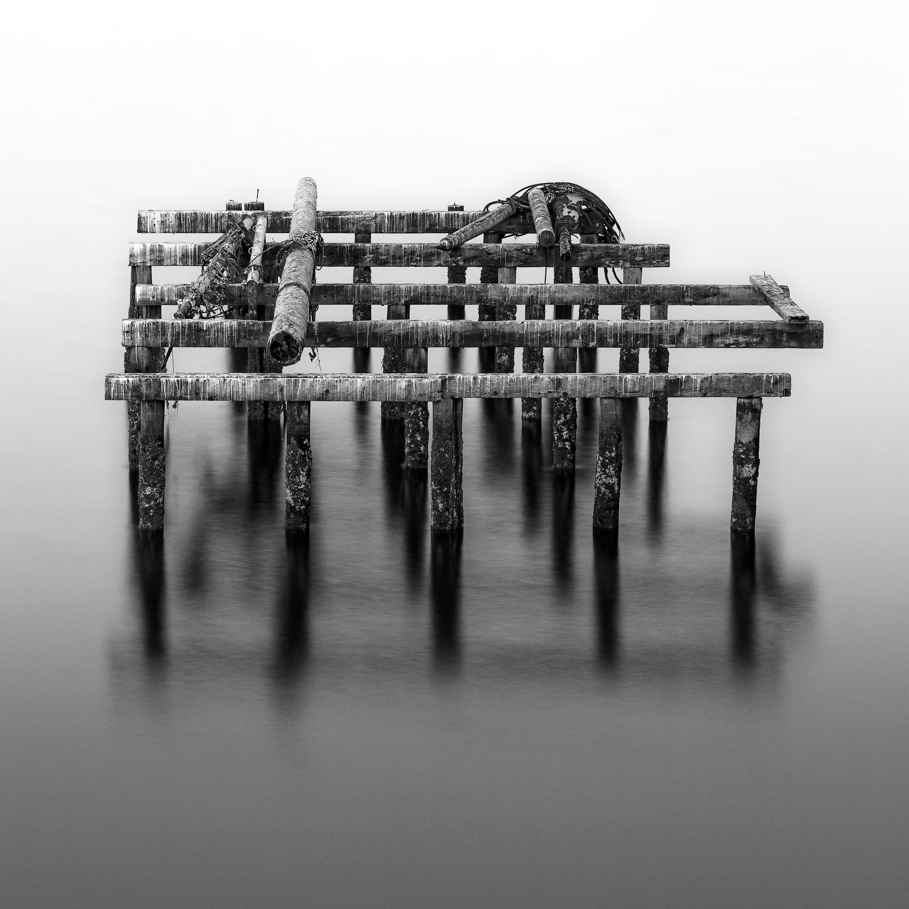 end-of-harbor-pilings.jpg