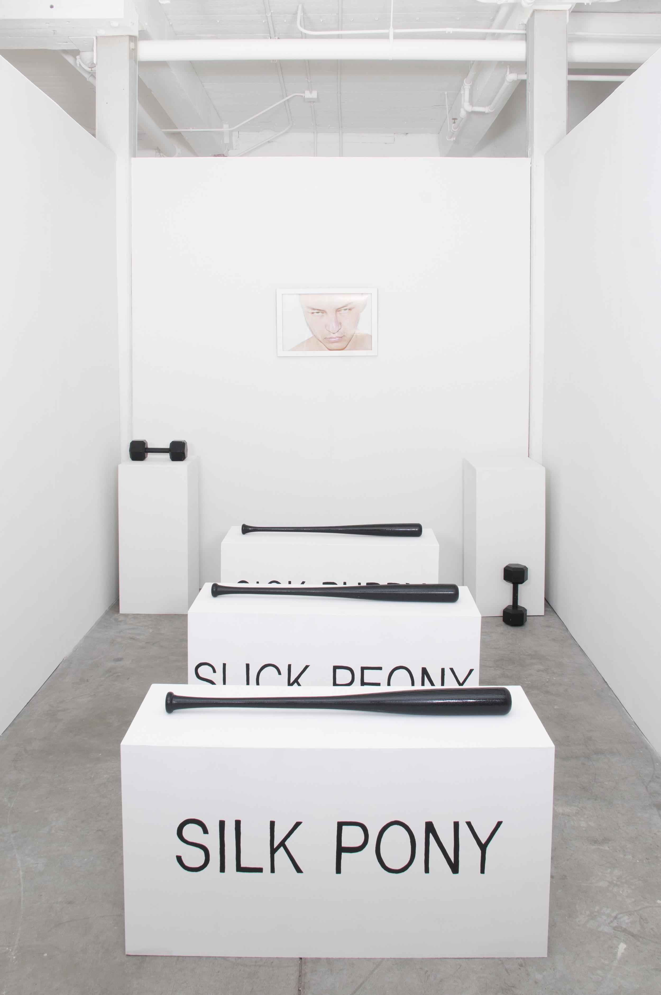 Pleasure Seeker Installation (C Print in Artist Frame, 3 Sculptures, 2 Dumbbells) Dimensions Variable 2014