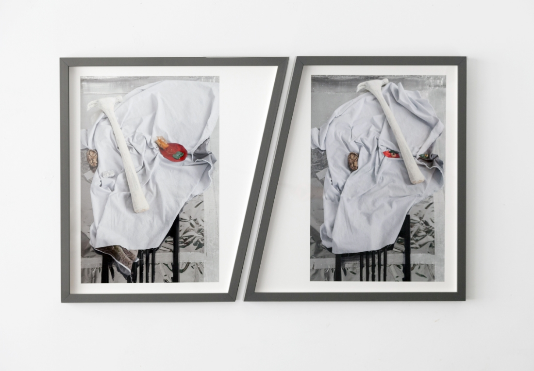 "barbara weissberger, hammer nose, archival pigment prints, custom shaped frames, 21.5"" x 36"" 2016"