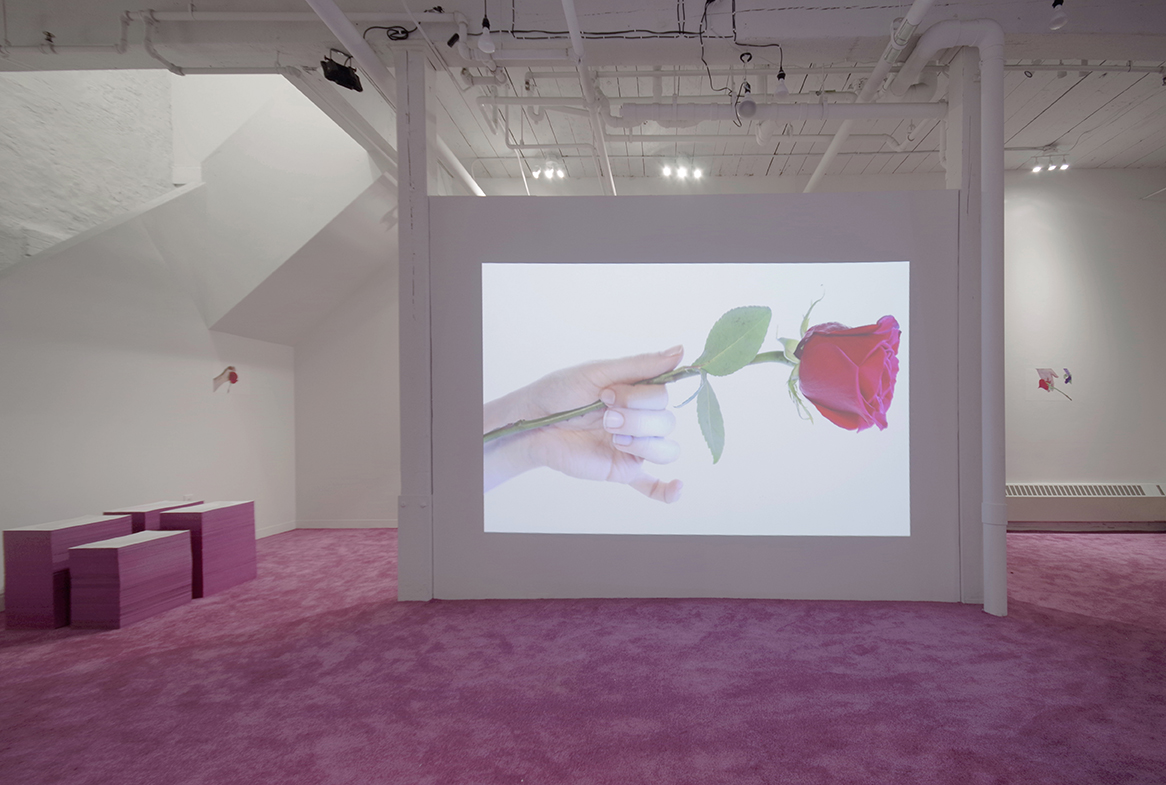 Amy Beecher, Beautiful Beautiful Beautiful Rose, GRIN May 17 - June 24 2017 Installation 11.jpg
