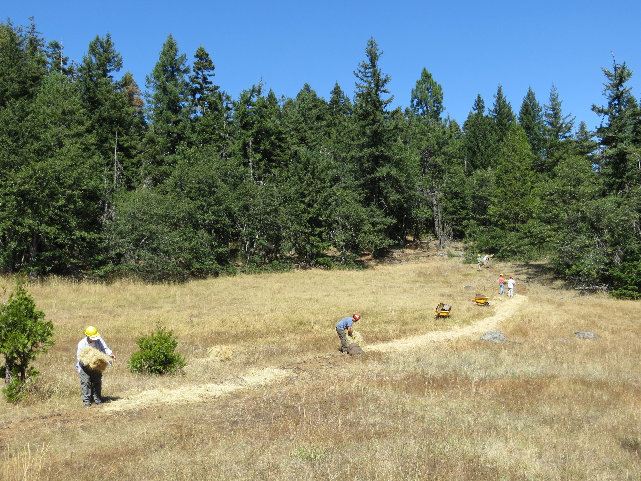 Meadow restoration - 2013 National Public Lands Day. Joel Brumm photos