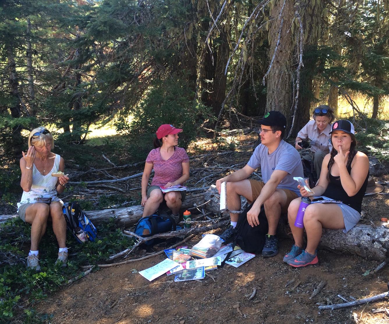 Lunch beneath ponderosa pine