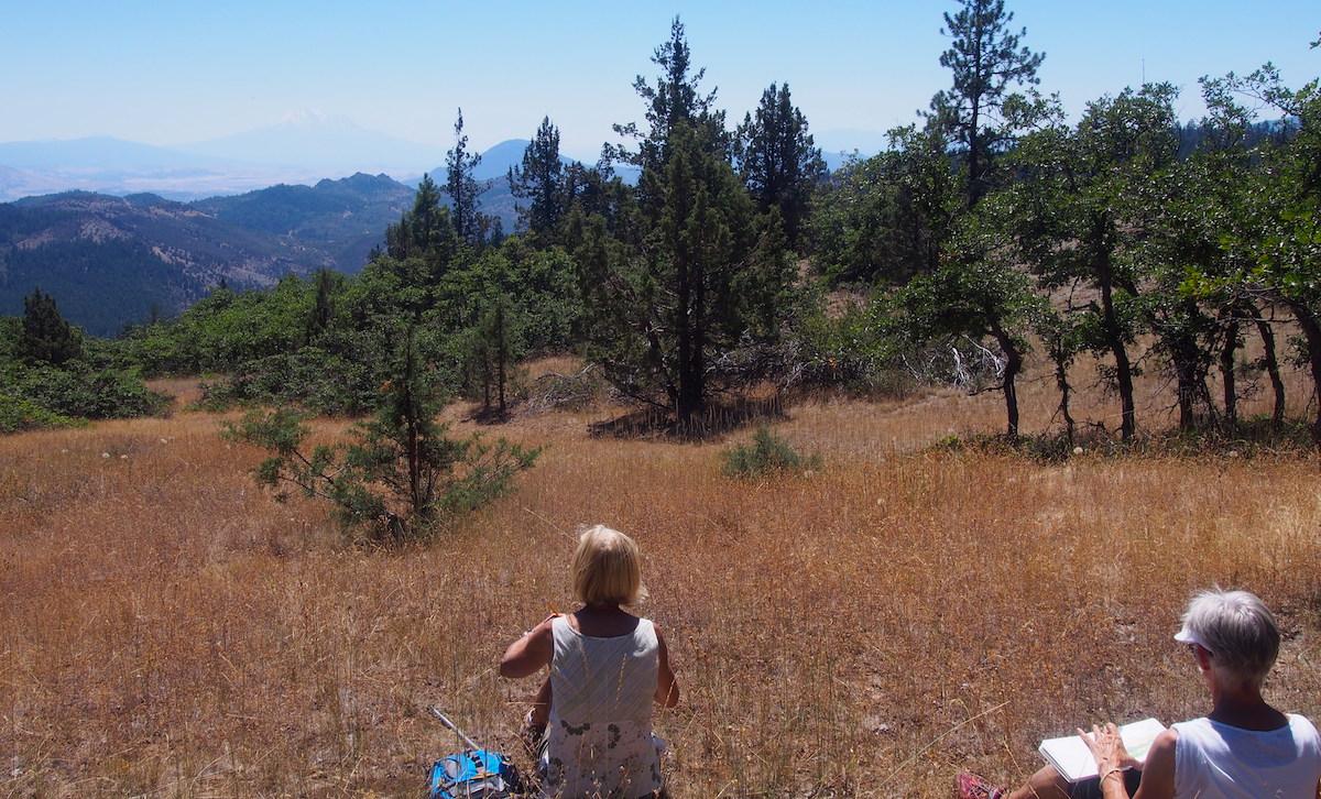 View to Mt. Shasta