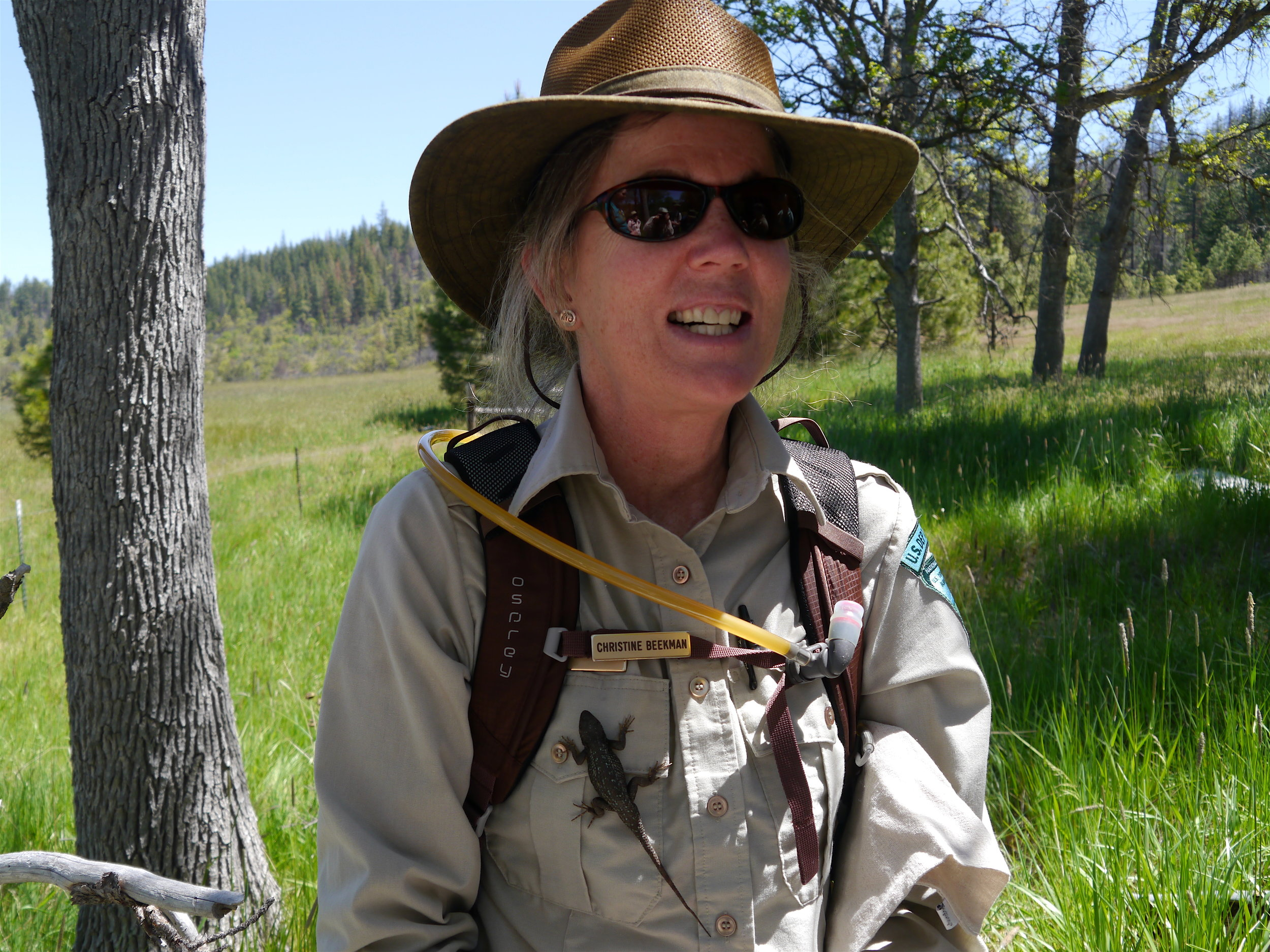 "Christine Beekman, BLM Interpretive Specialist ""wears"" a live lizard. Photo by Terry Dickey"