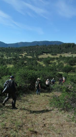 Hiking into the Mariposa Lily Botanical Area.