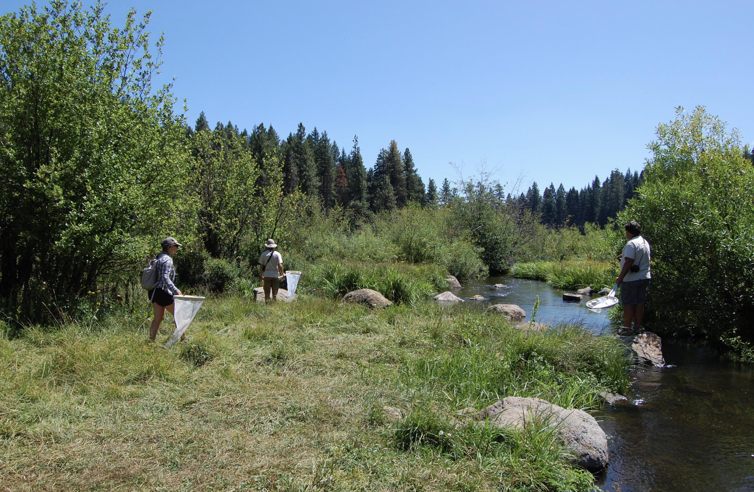 Surveying at Little Hyatt Lake. Photo by Lilia Letsch.