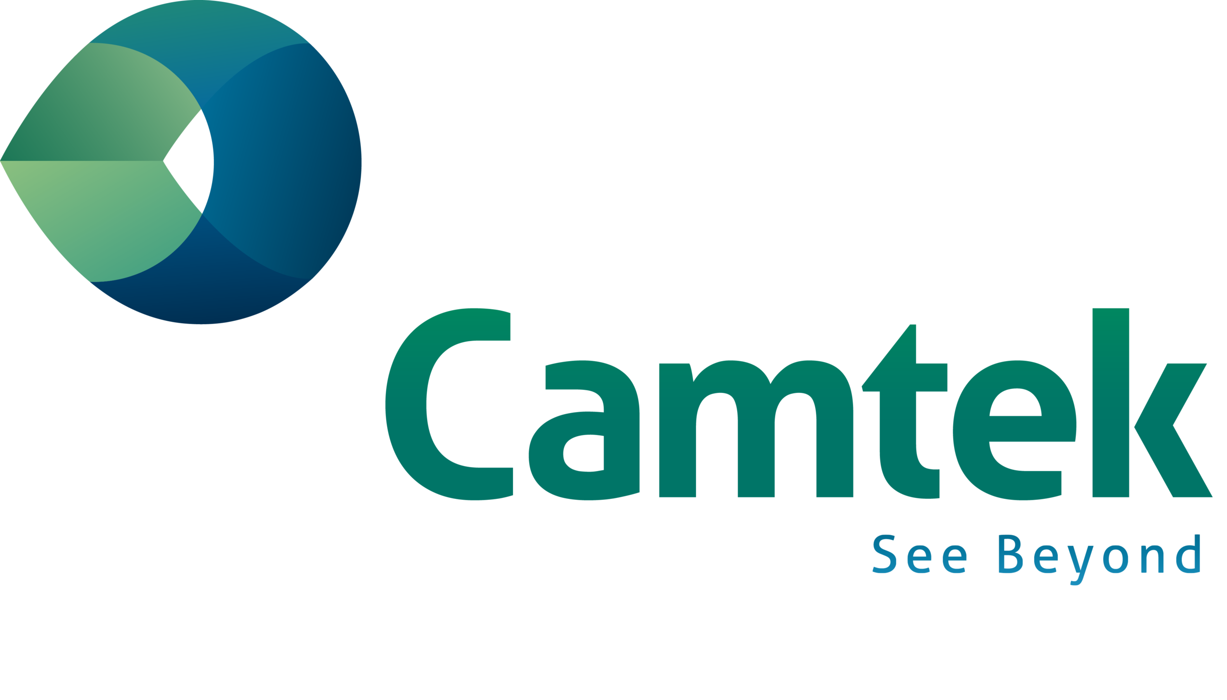 Camtek LOGO Slogan (Crockett Southwest Company).png