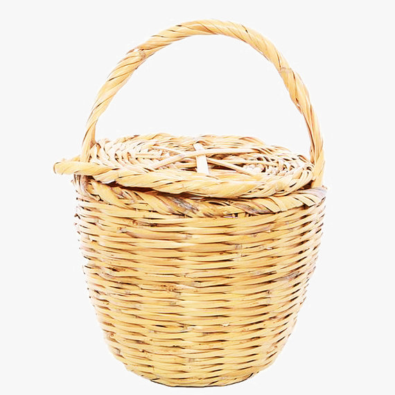 Birkin Basket. Shop it  here .