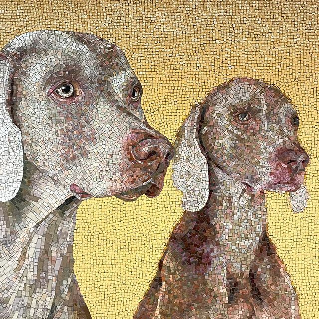 Saw these lovely #weimaraners in the subway station. These mosaics are beautiful! #nycsubway #williamwegmansweimaraners