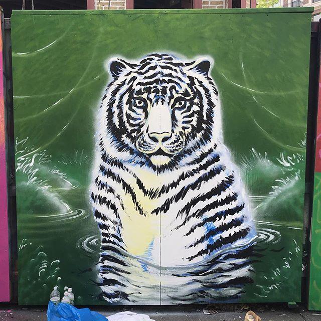 RAWWWR!!! ✨✍🏻🌴🐾 making more progress now that the sun is out! 🌞 #underhillwalls #whitetiger #jungle #endangeredspecies #urbanjungle @welcometothejungle #wildlife #art #publicart #streetart #brooklynnyc