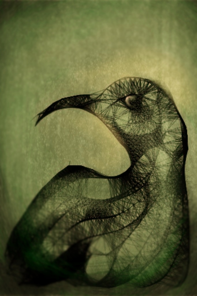 Bird to Death