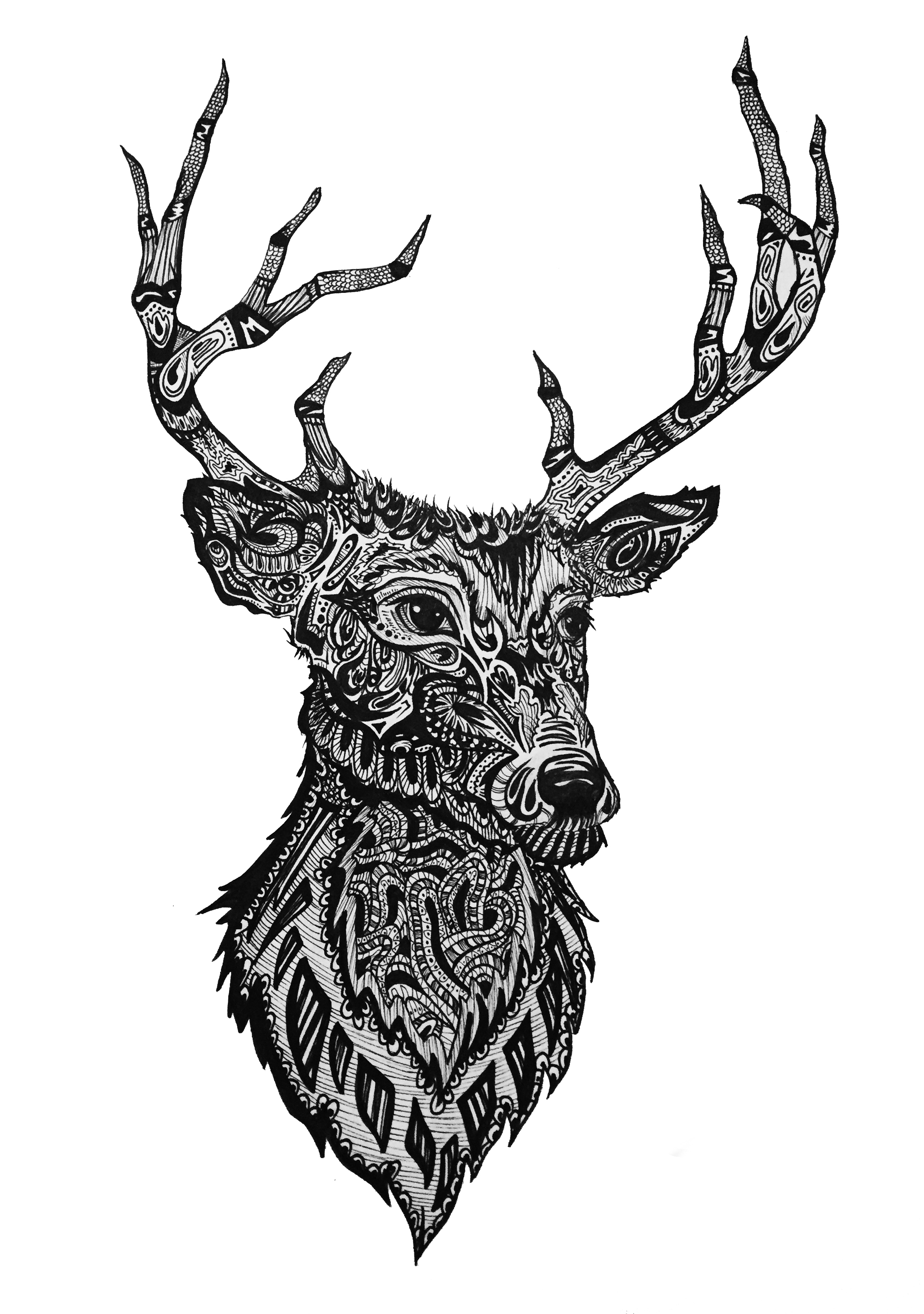 Red Deer; Inspired by the rolling hills of Dublin