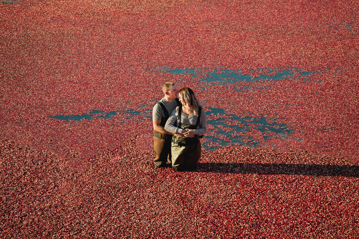 Hopcott-Farm-Cranberry-Fields-Rustic-Engagment-Shoot