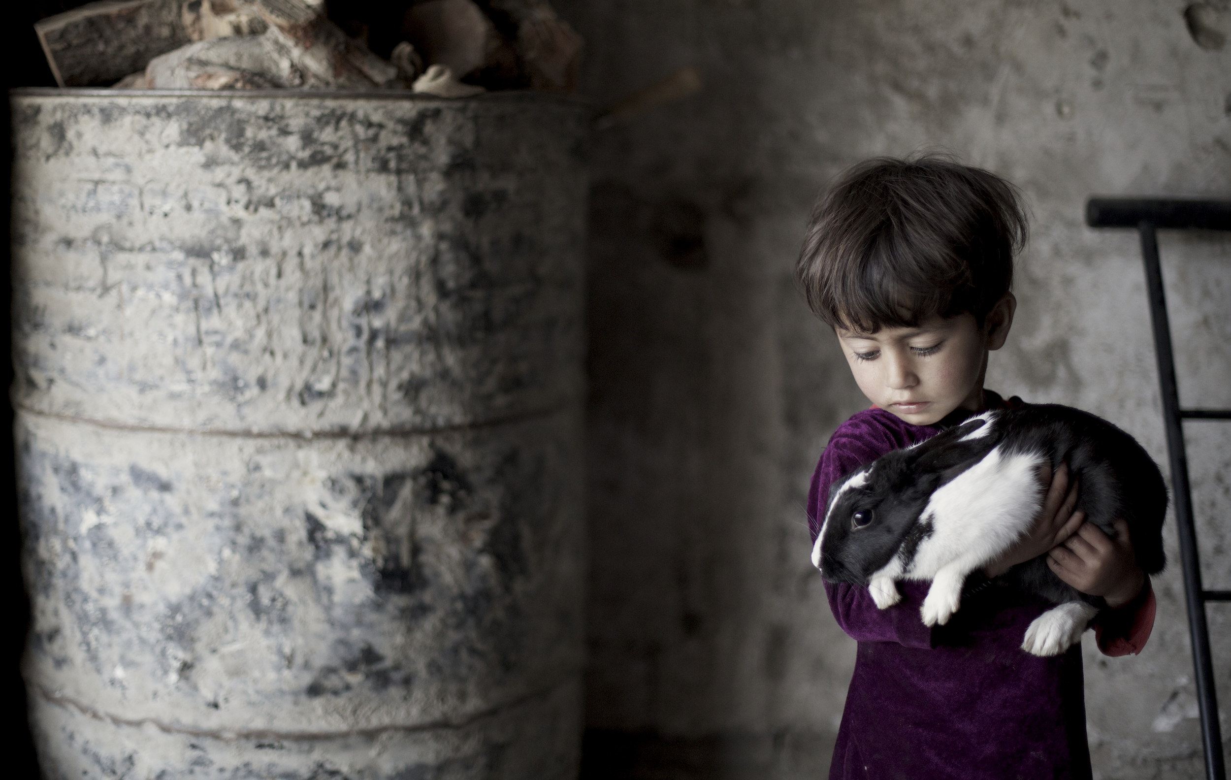 A young Afghan girl holds her pet rabbit in her bombed out home in Kabul