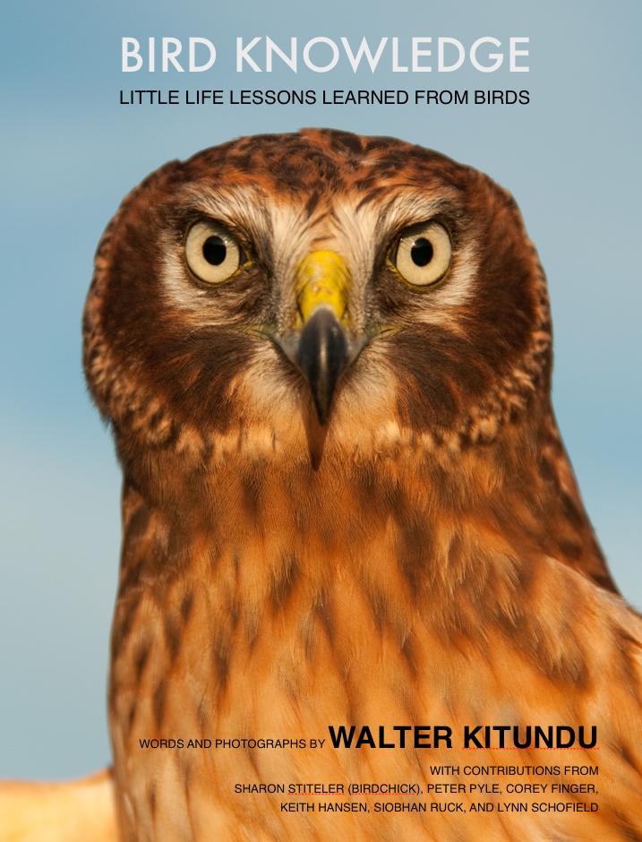 Bird Knowledge Cover.jpg