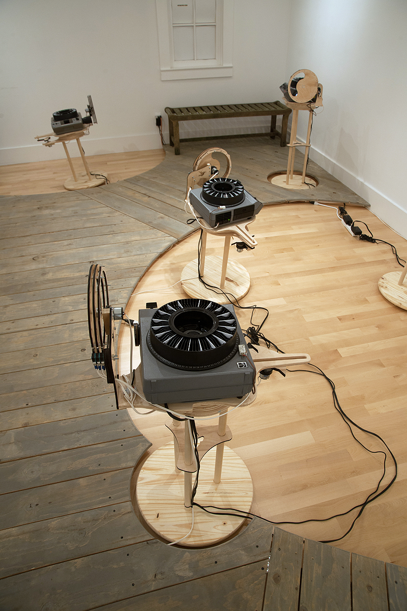 A bench is included so you can sit and watch the birds that other visitors scare up as they wander through the gallery.