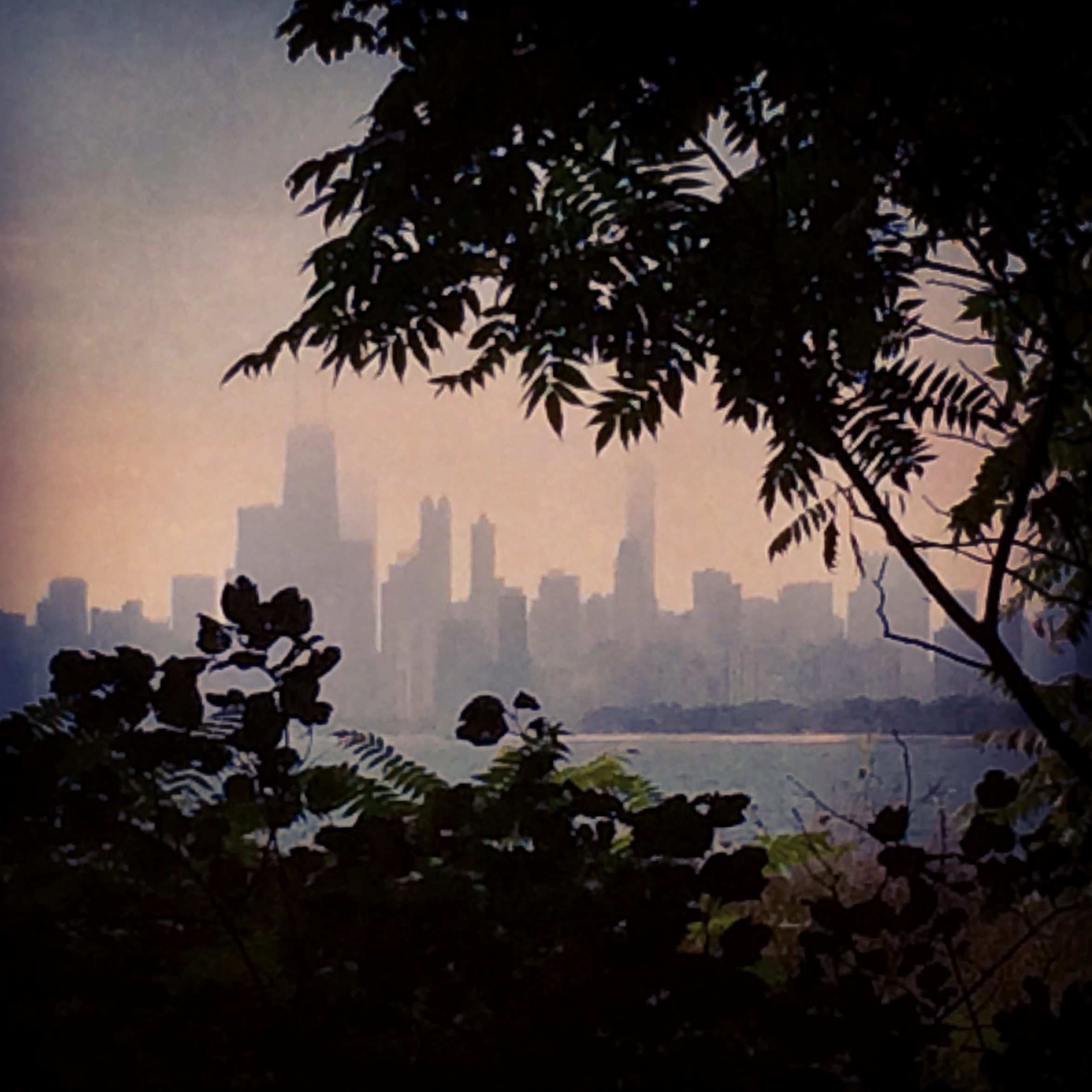 Chicago from Montrose Point