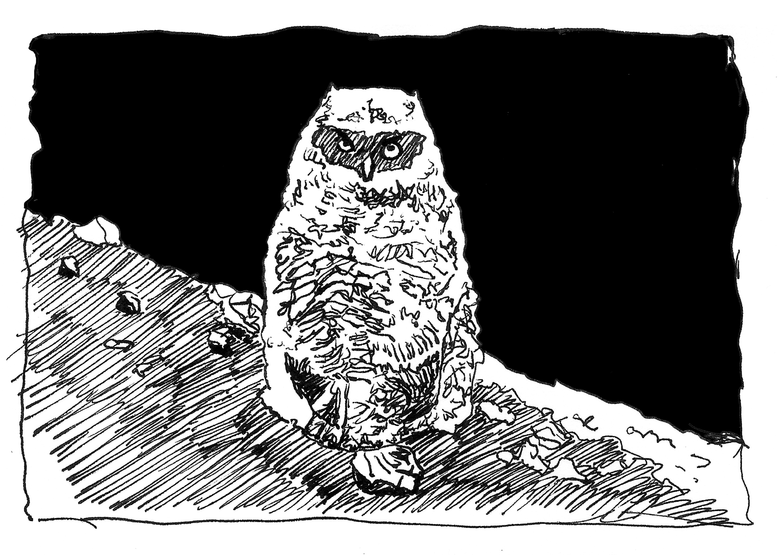 Illustration: Kitundu