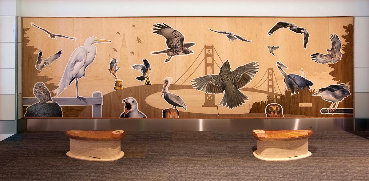 San Francisco Bird Encounters (2012)
