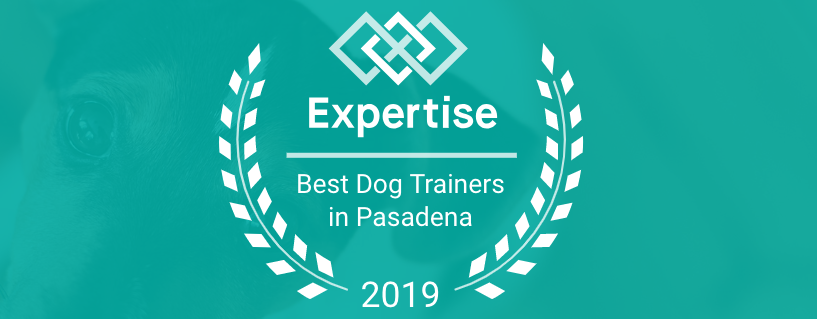 Voted Top Ten Dog Trainers in Pasadena for 2018 and 2019!