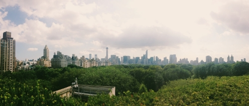 View from the rooftop terrace at The Met