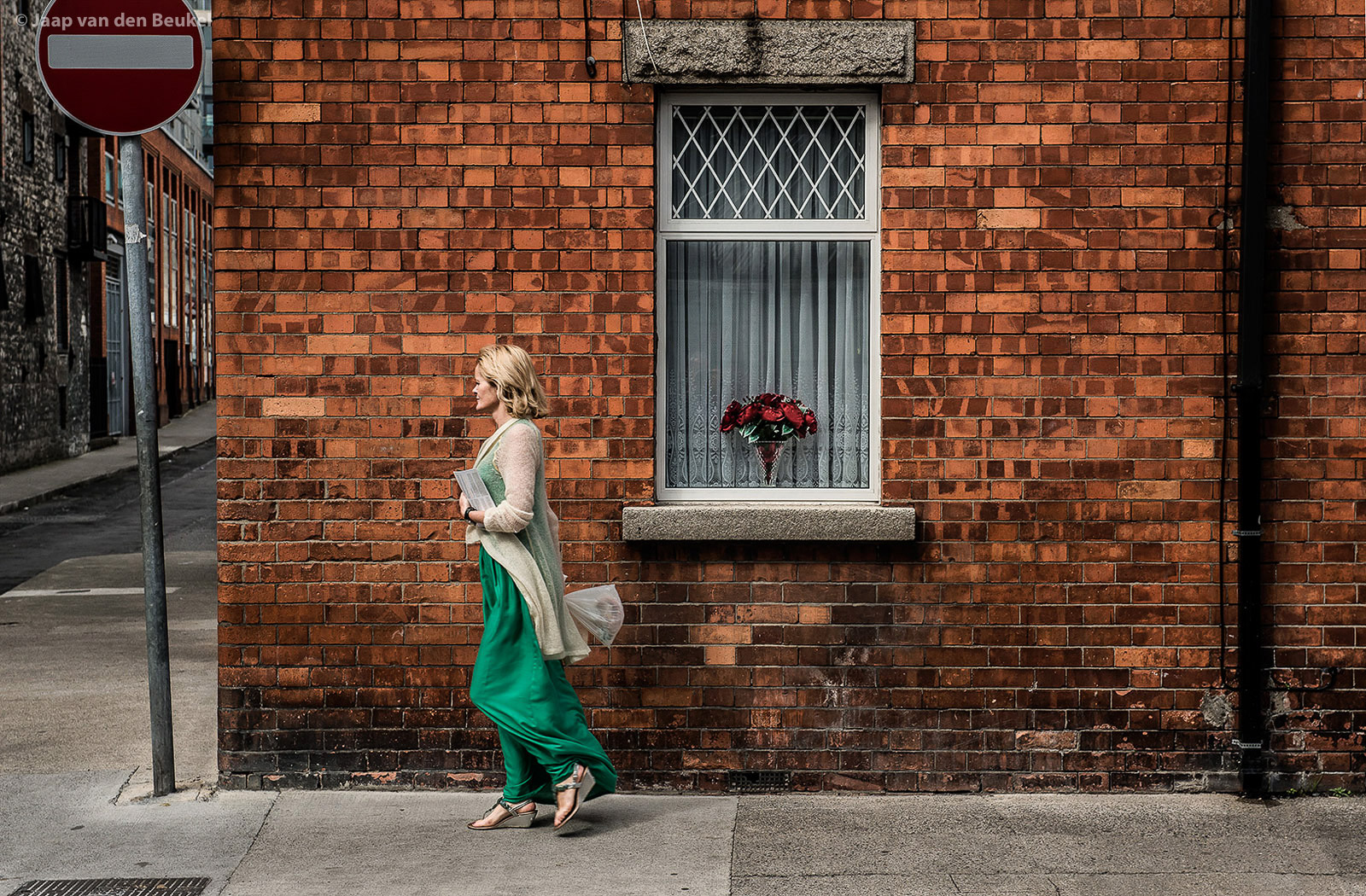 """Dublin """"Red roses"""""""