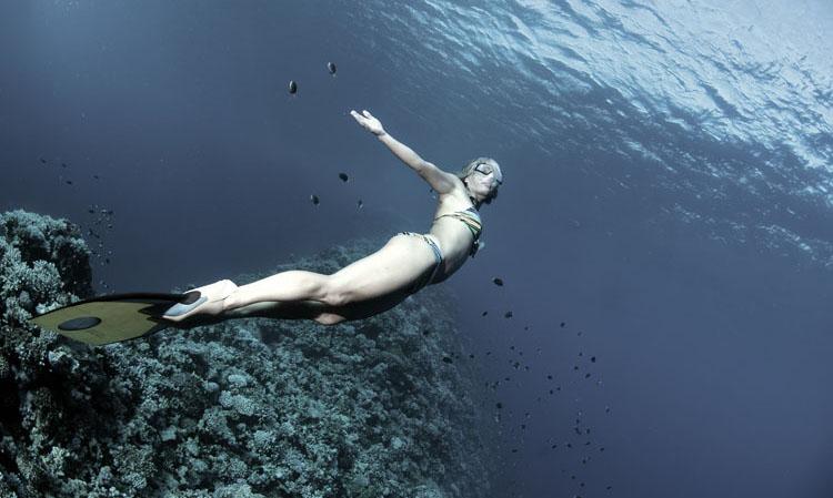 dyd-sara-freediving-angel.jpg